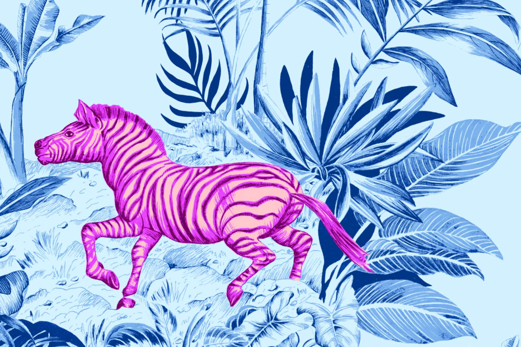 Zebra-Jungle