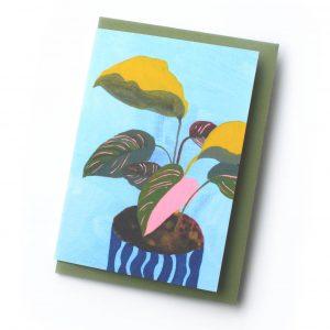 Calathea-card-George-Daphne
