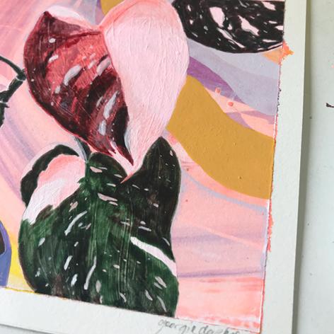 Mini-Pink-Philodendron-Georgie-Daphne