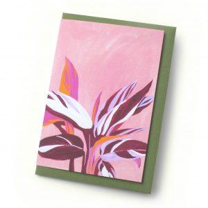Stromanthe-card-George-Daphne